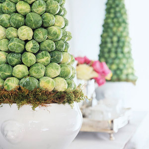 Brussels sprout covered topiaries