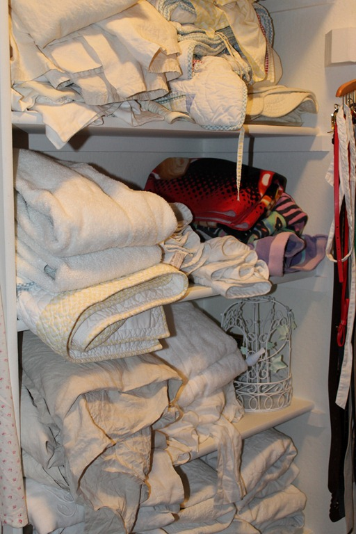 This System Was Obviously NOT Working So I Studied Some Other Linen Closets