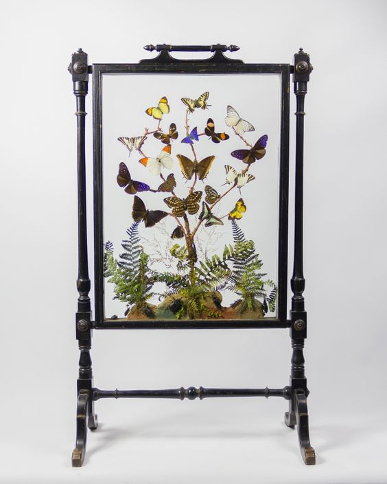 Taxidermy Butterfly Fire Screen from Ayre & Co.: