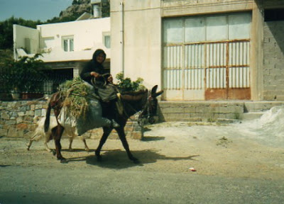 Lady riding on donkey
