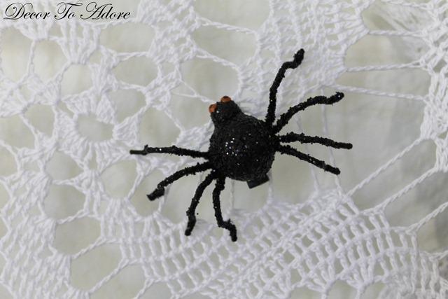 spider 005-002