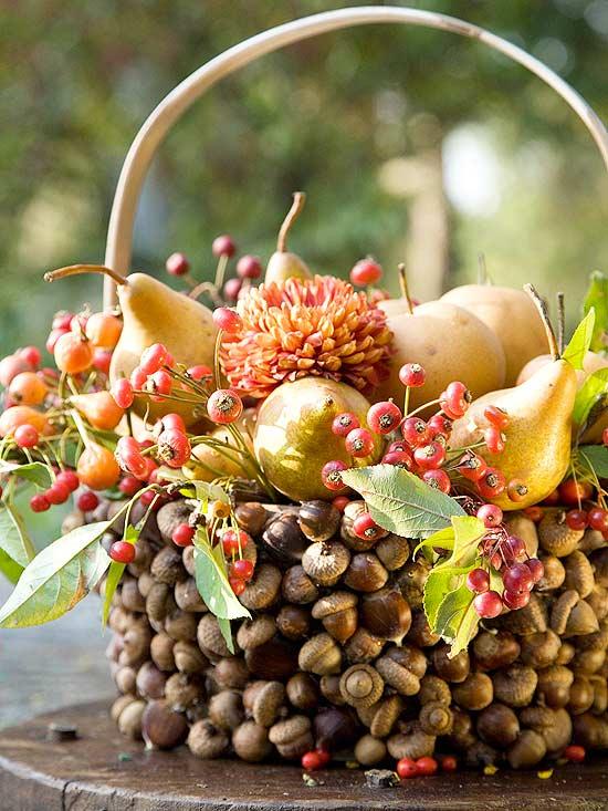Acorn Basket Display