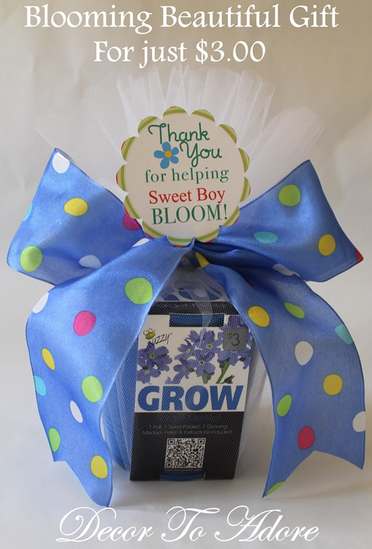 Blooming Beautiful Gift for Just $3.00