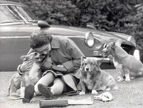 The Queen with her Corgis at Windsor in 1973.