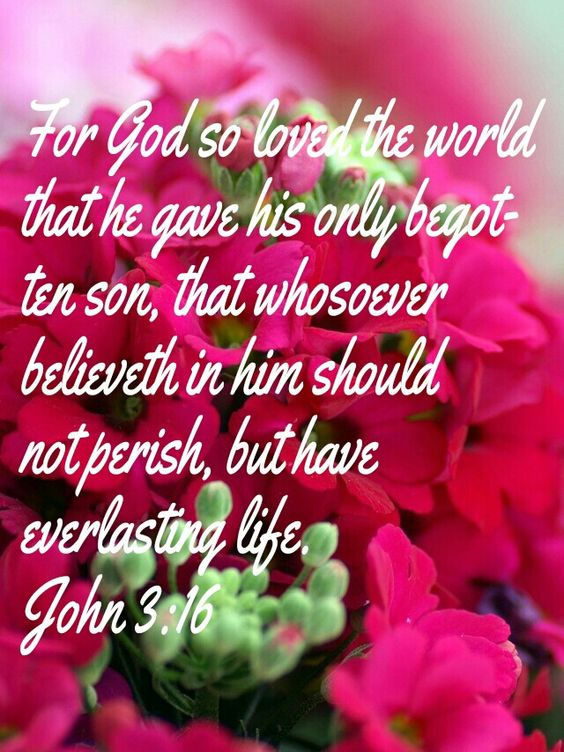 For God so loved the world that he gave.:
